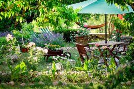 Alt til haven